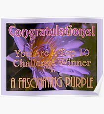 Banner : Top 10 Winner in A Fascinating Purple Poster