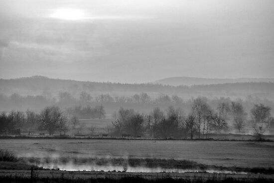Oklahoma Misty Morning by Mitchell Tillison