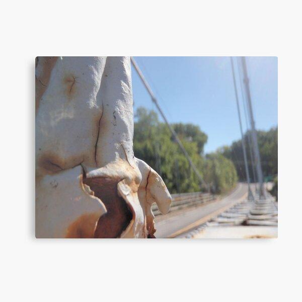 limp bridge  Canvas Print