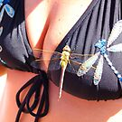 fooling the Dragonfly by the57man