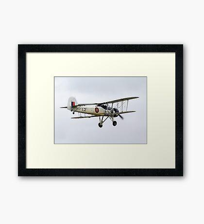 Swordfish 2 Framed Print