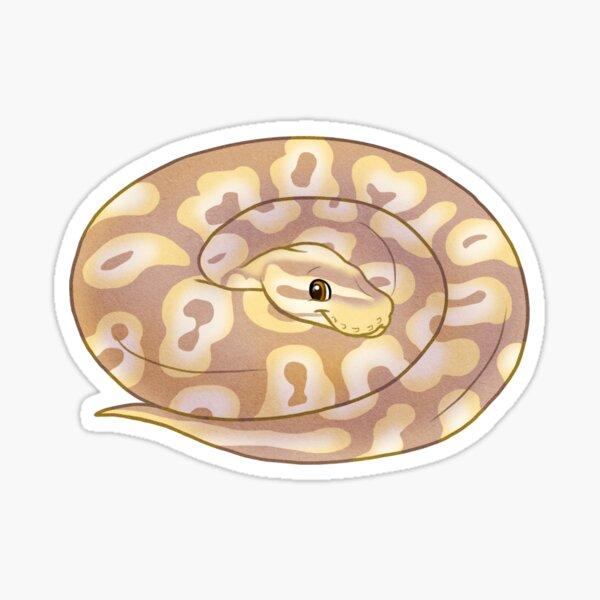 Adorable cute cartoon chibi ball python banana pastel morph Sticker