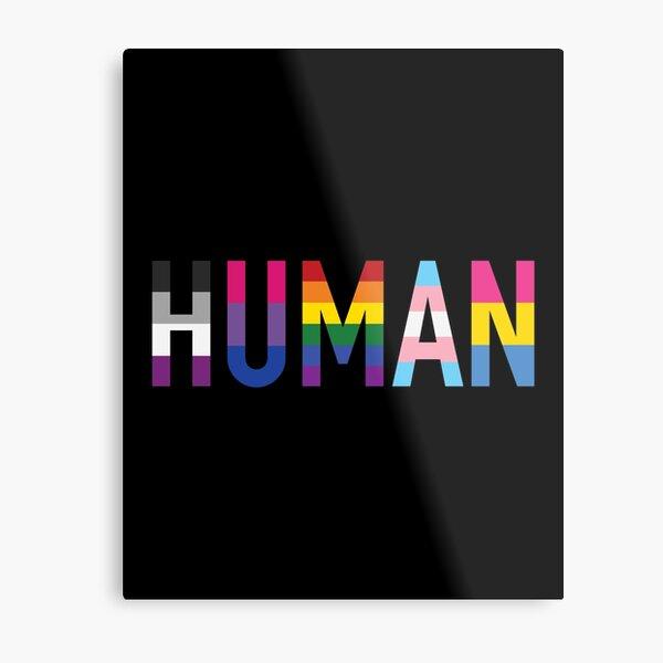 Menschliche, verschiedene Queer Flags 1 Metallbild