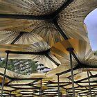 Creations & Shelters ( 1 ) - Amanda Levete's MPavilion by Larry Davis