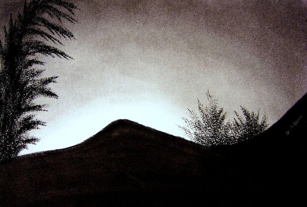 Sunset by Mitch Adams