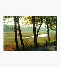 Autumn Meadow Photographic Print