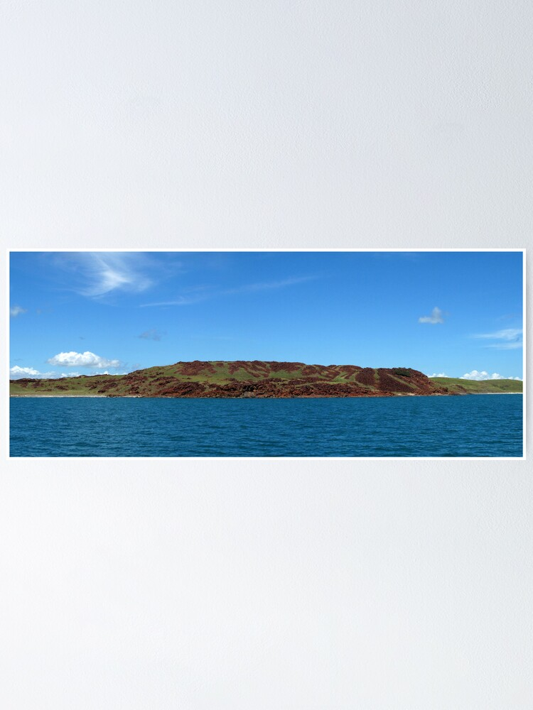 Alternate view of Enderby Island Poster