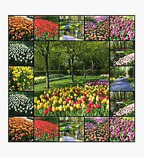 Kaleidoscope of Colours - Keukenhof Collage Photographic Print
