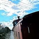 The Caboose Party - Texas & Austin Central RR - 2011 *featured by Jack McCabe