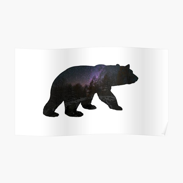 Bear with starry sky Poster