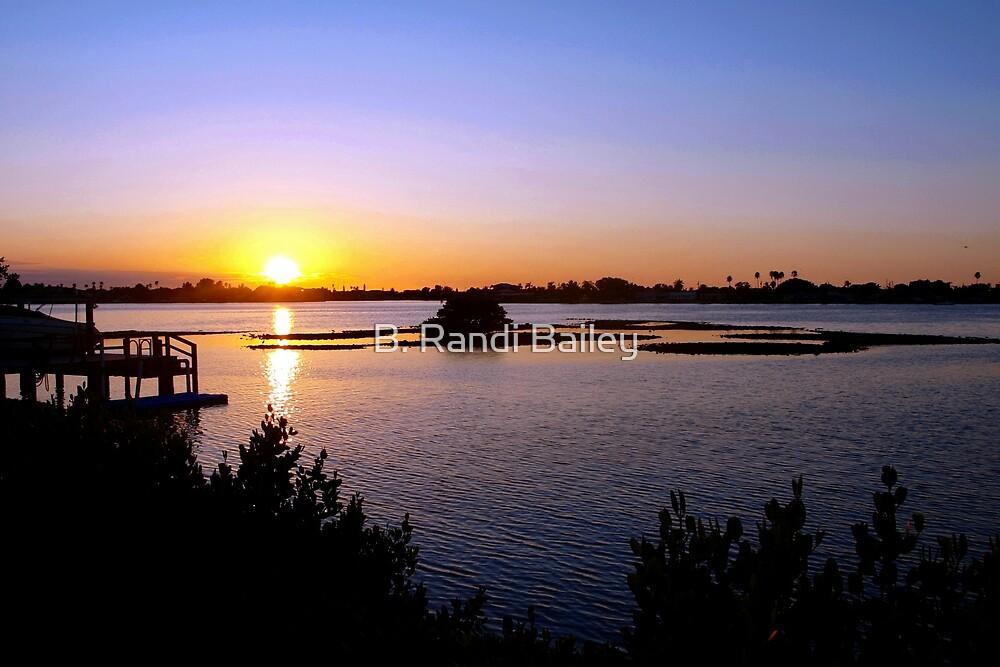 Intracoastal sunset by ♥⊱ B. Randi Bailey