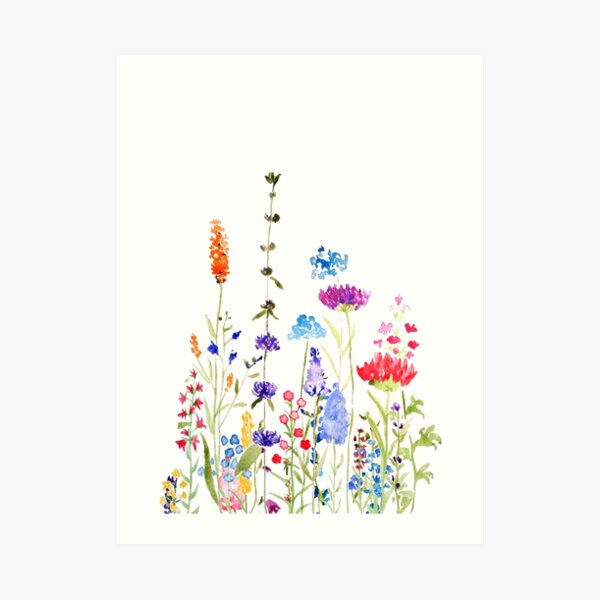 colorful wild flowers watercolor painting Art Print