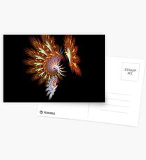 Spiral Splendor Postcards