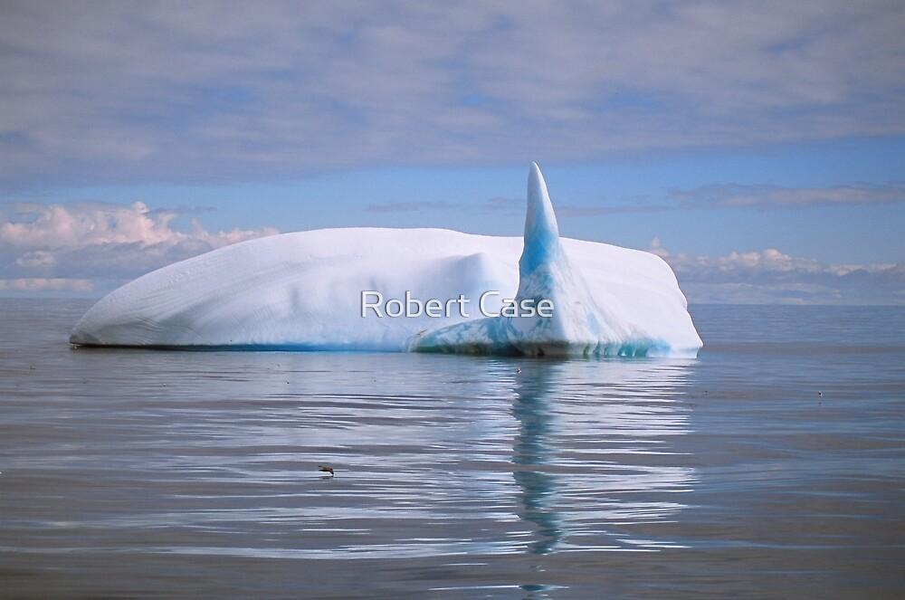 Sail Tail Iceberg by Robert Case