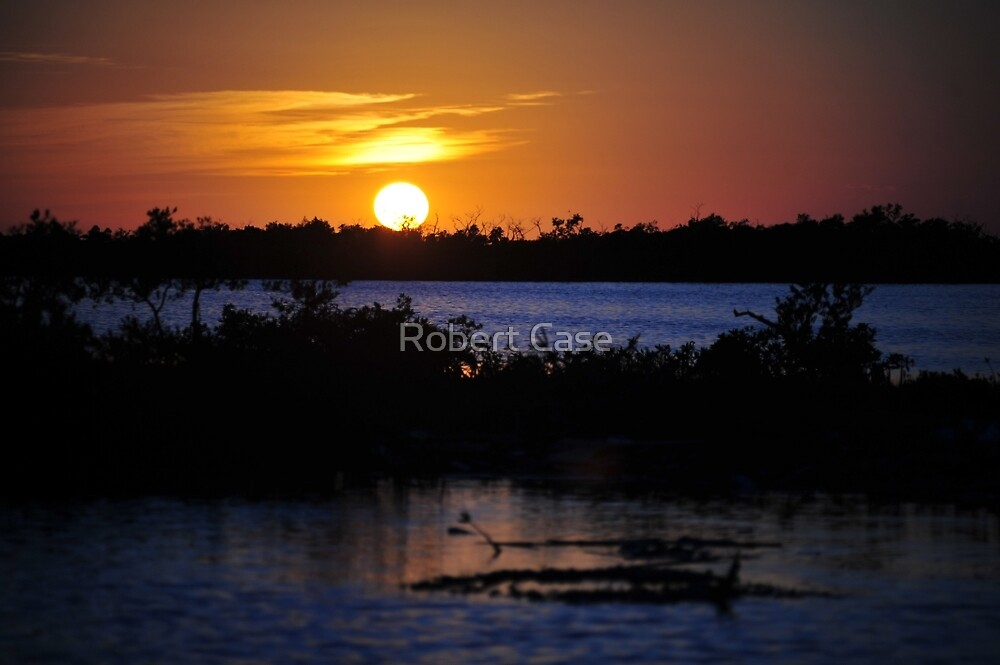Last Sunset 2008 by Robert Case