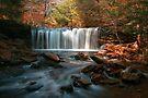 October Morning at Oneida Falls by Gene Walls