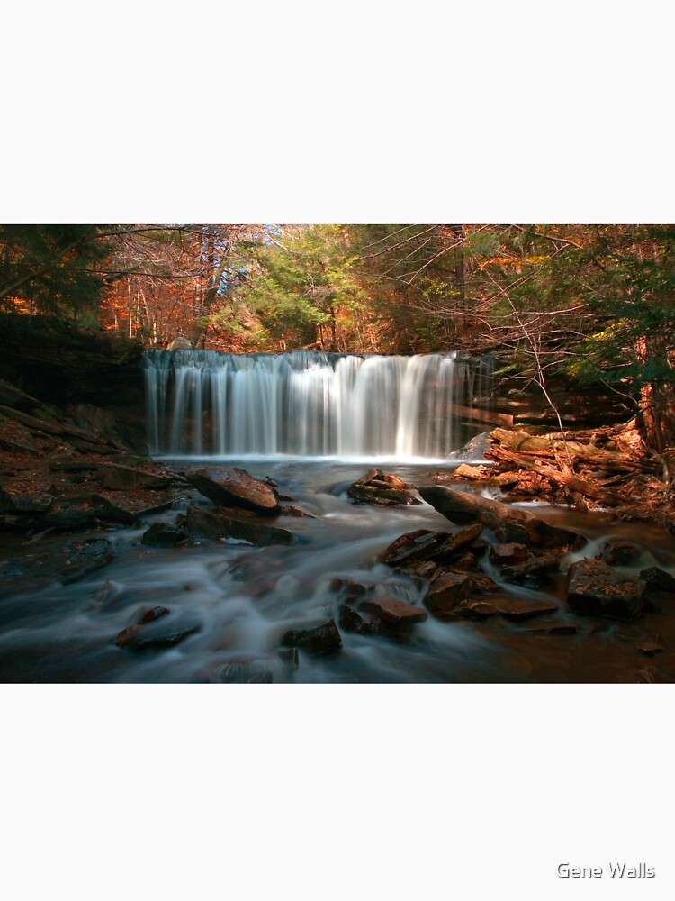 October Morning at Oneida Falls by ProfAudio