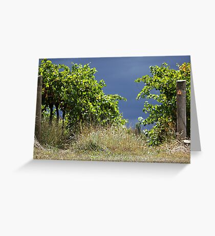 Stormy Vines Greeting Card