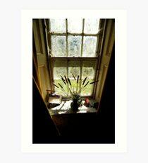 Armagh Window Art Print