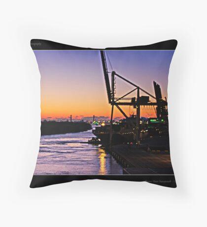 Dawn Over Savannah Throw Pillow