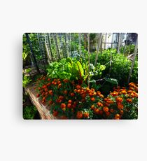 Home Vegetables Canvas Print