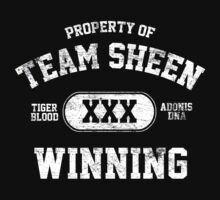 Charlie Sheen  Winning Tigers Blood