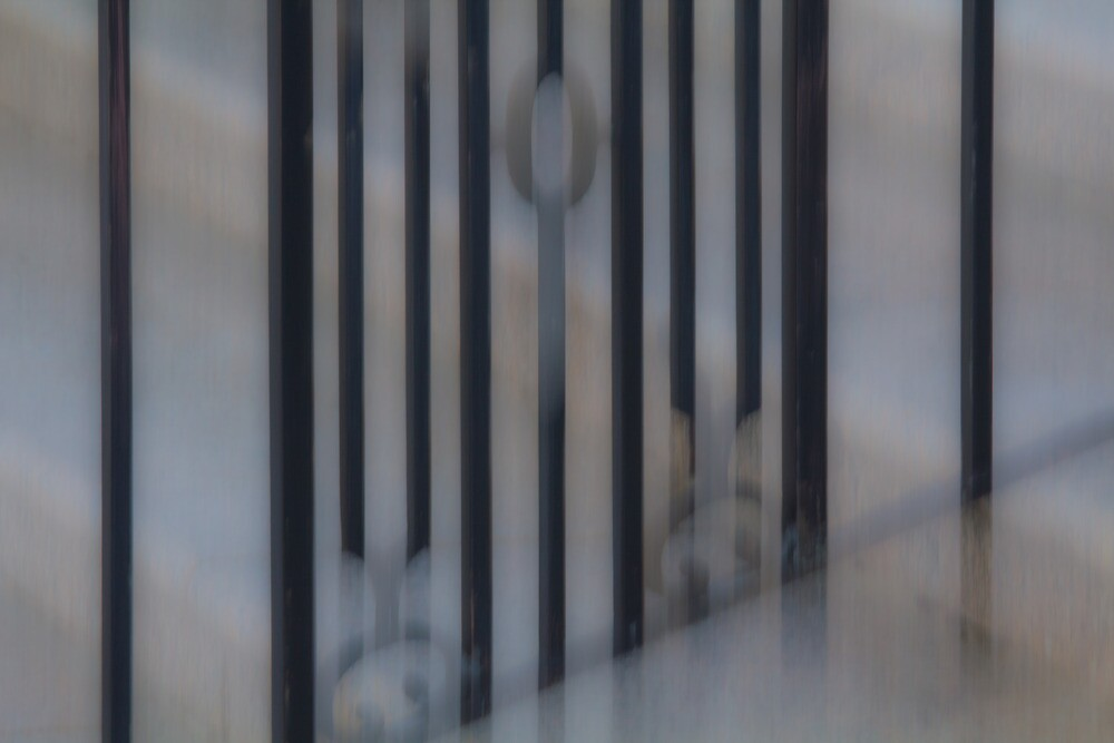 The Gate by Lynn Wiles