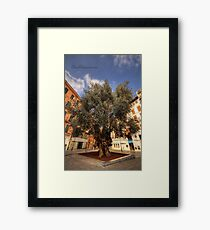 Photomatix HDR Tennis challenge Entry Framed Print