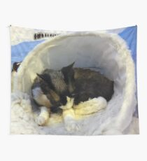 Devonshire cat asleep Wall Tapestry