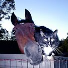 Best Friends - Horse & Cat  by Peggy Cline