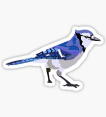 Blue Jay Sticker