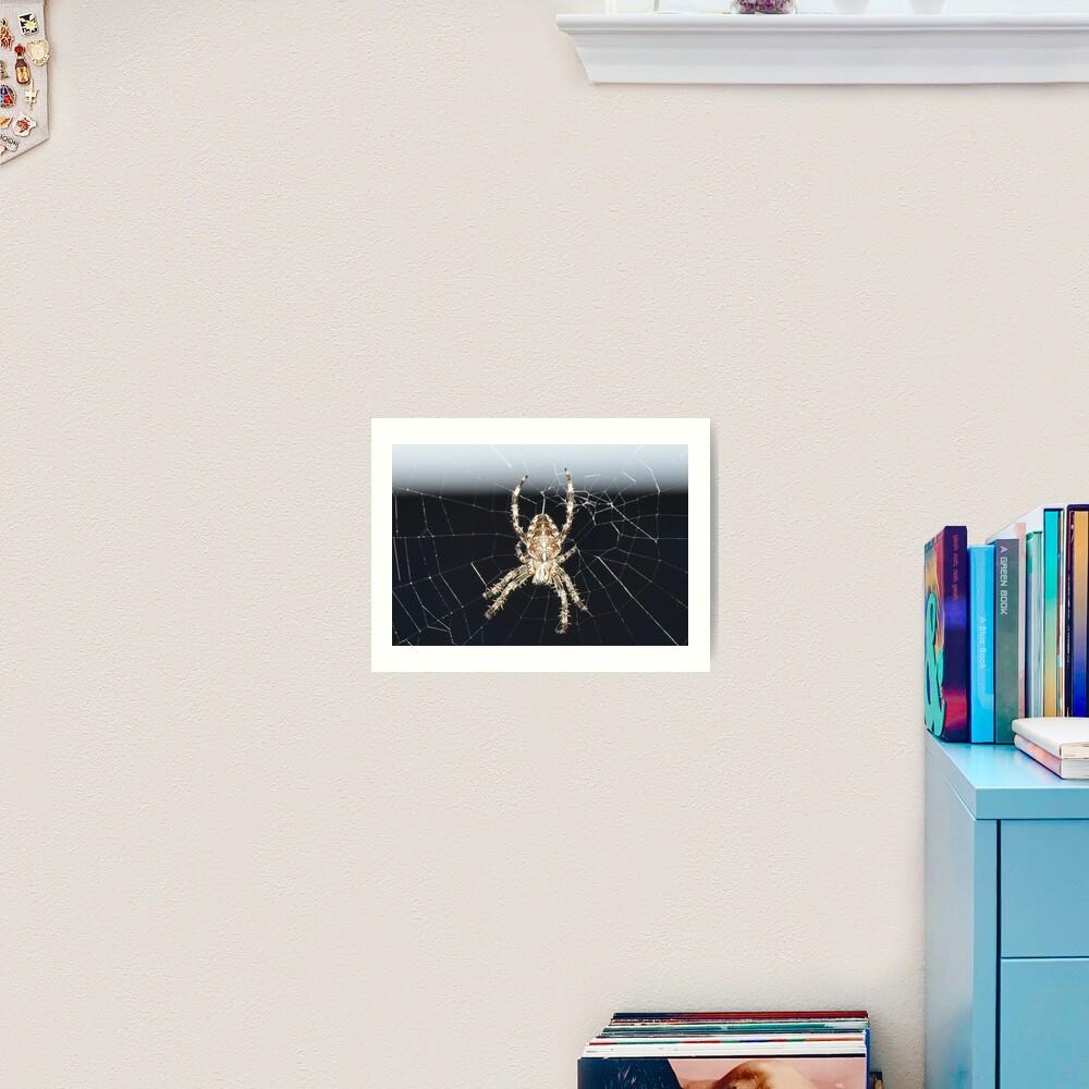 Arachnid Art Print