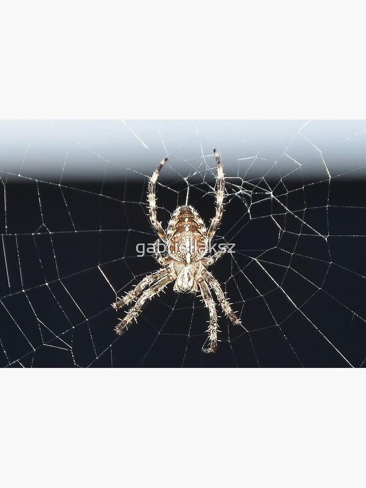 Arachnid by gabriellaksz