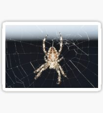 Arachnid Sticker