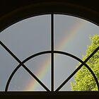 Rain Spattered Window by Marijane  Moyer