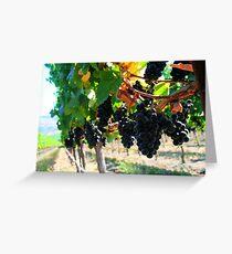 Fiddlestix Vineyard Greeting Card