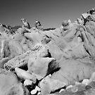 Monolith by Brian Leadingham