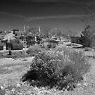 Virginia City Cemetary by Brian Leadingham