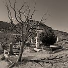 Cemetary by Brian Leadingham