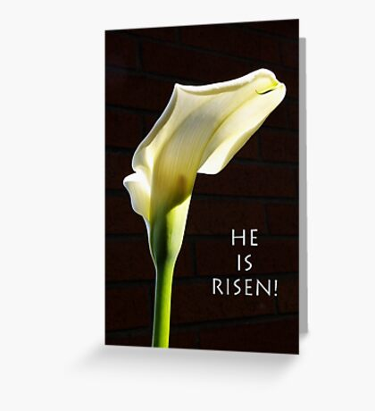 """he is risen"" calla lily Greeting Card"