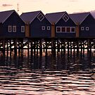 Evening At Busselton by Chris Paddick