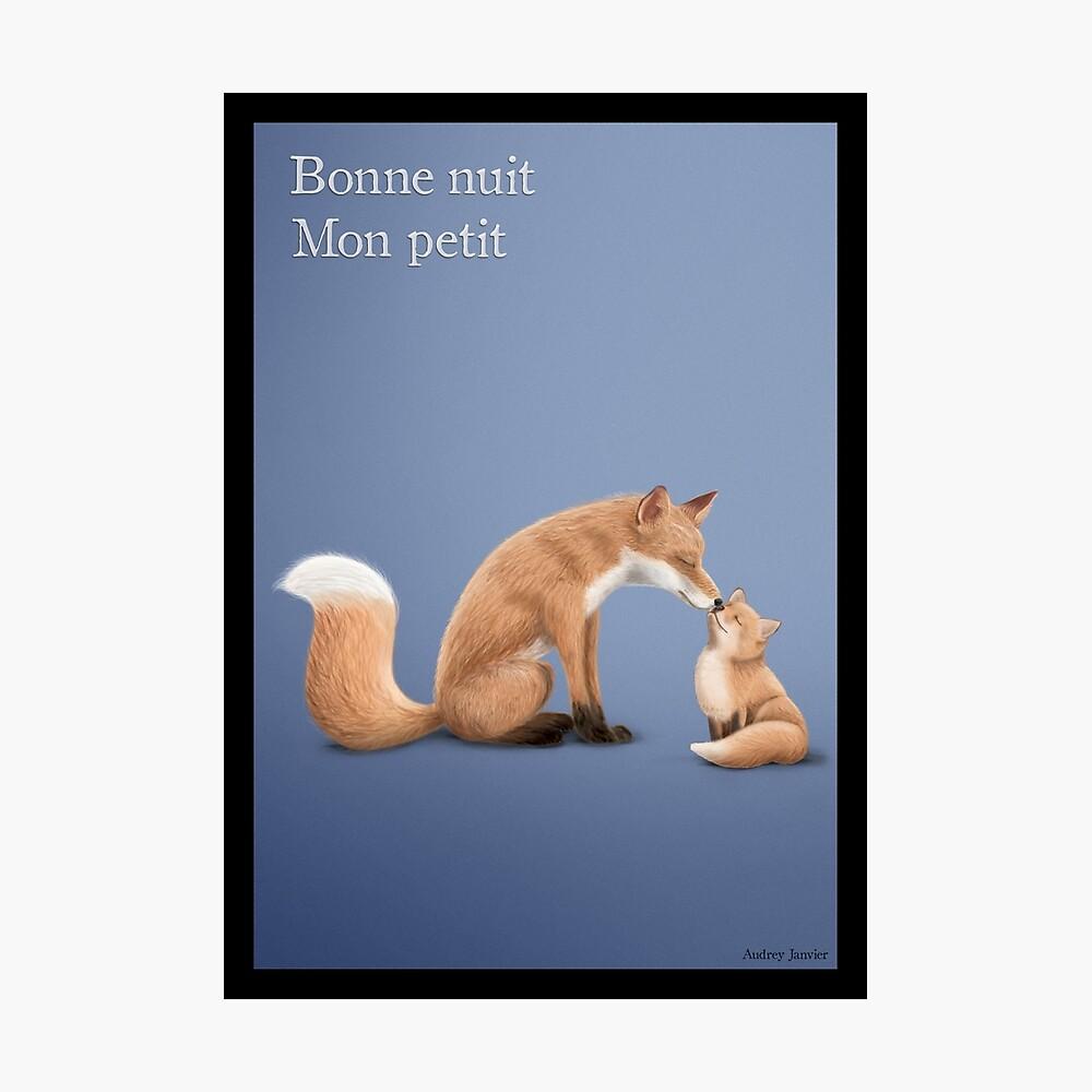 Maman Renard et son renardeau Impression photo