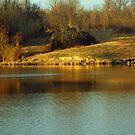 Baltz Lake in winter golden hour by Susan Blevins