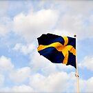 Swedish Flag by HeatherMScholl
