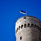 Pikk Hermann, Tallinn, Estonia by HeatherMScholl