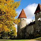 Old Town Tallinn, Estonia by HeatherMScholl
