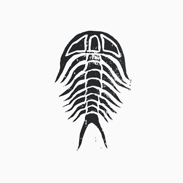 Trilobite without Border by Laliibeans