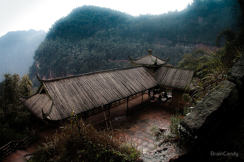 bamboo sea .. by BrainCandy