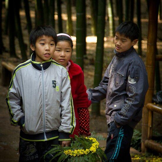 bamboo sea ........... by BrainCandy