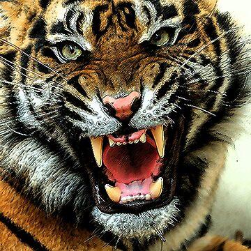 Tiger 1 by Nashc4